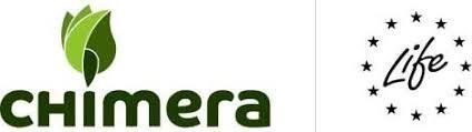 chimera-e1565165987109
