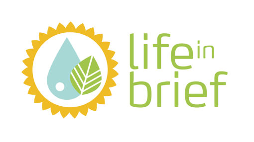 logo-lifeinbrief-01-510x286
